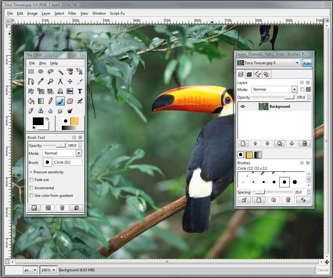 portable photoshop for ubuntu
