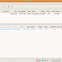 Vuze-Torrent-Downloads