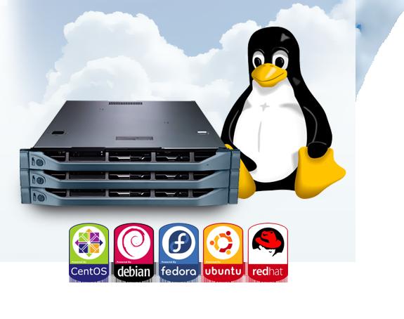 Risultati immagini per server linux