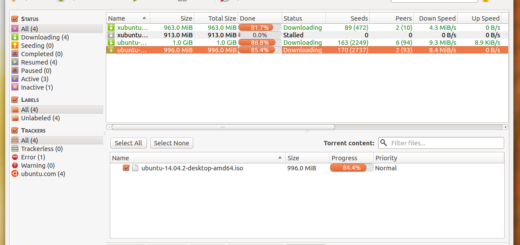 QBittorrent for Ubuntu 14.04 or 14.10