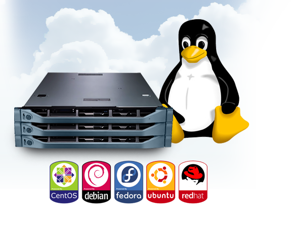 Best 5 Cheap Linux VPS WebHosts To Try - Only the fast