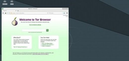 Debian-Based DebEX Barebone Live DVD Features Xfce 4 12 1 and Linux