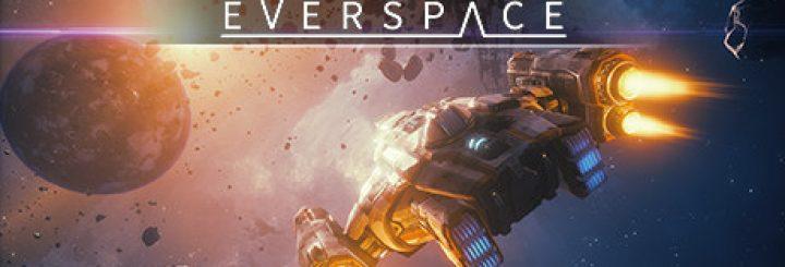 Everspace Game On Ubuntu