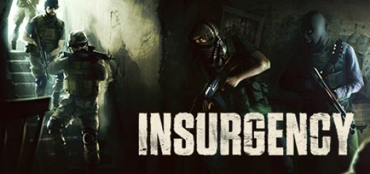 Insurgency Game on Ubuntu