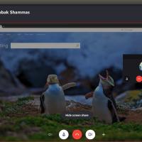 Ubuntu-1804-Skype-Preview