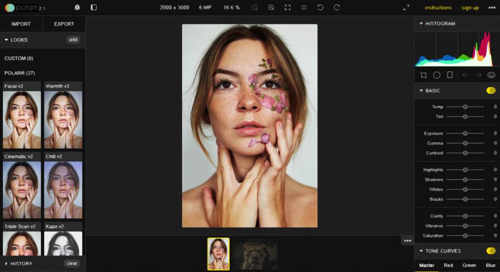 Polarr image editor screenshot