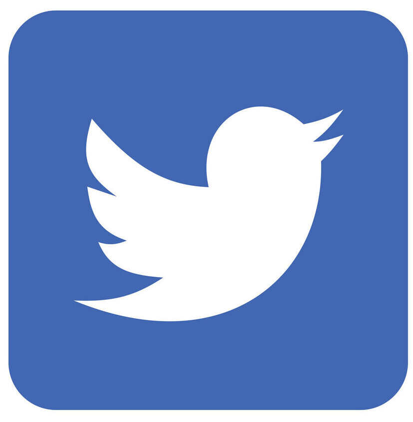 Twitter Linux Icon