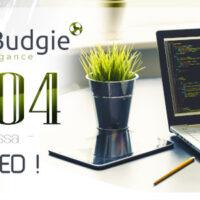Ubuntu Budgie 20.04 LTS Released